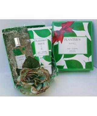 Confezione regalo color verde PLANTER'S