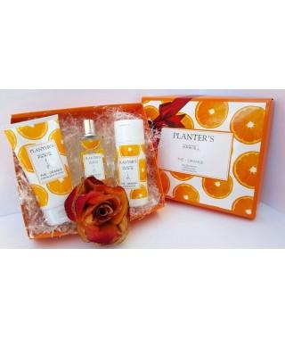 Confezione regalo color arancio PLANTER'S